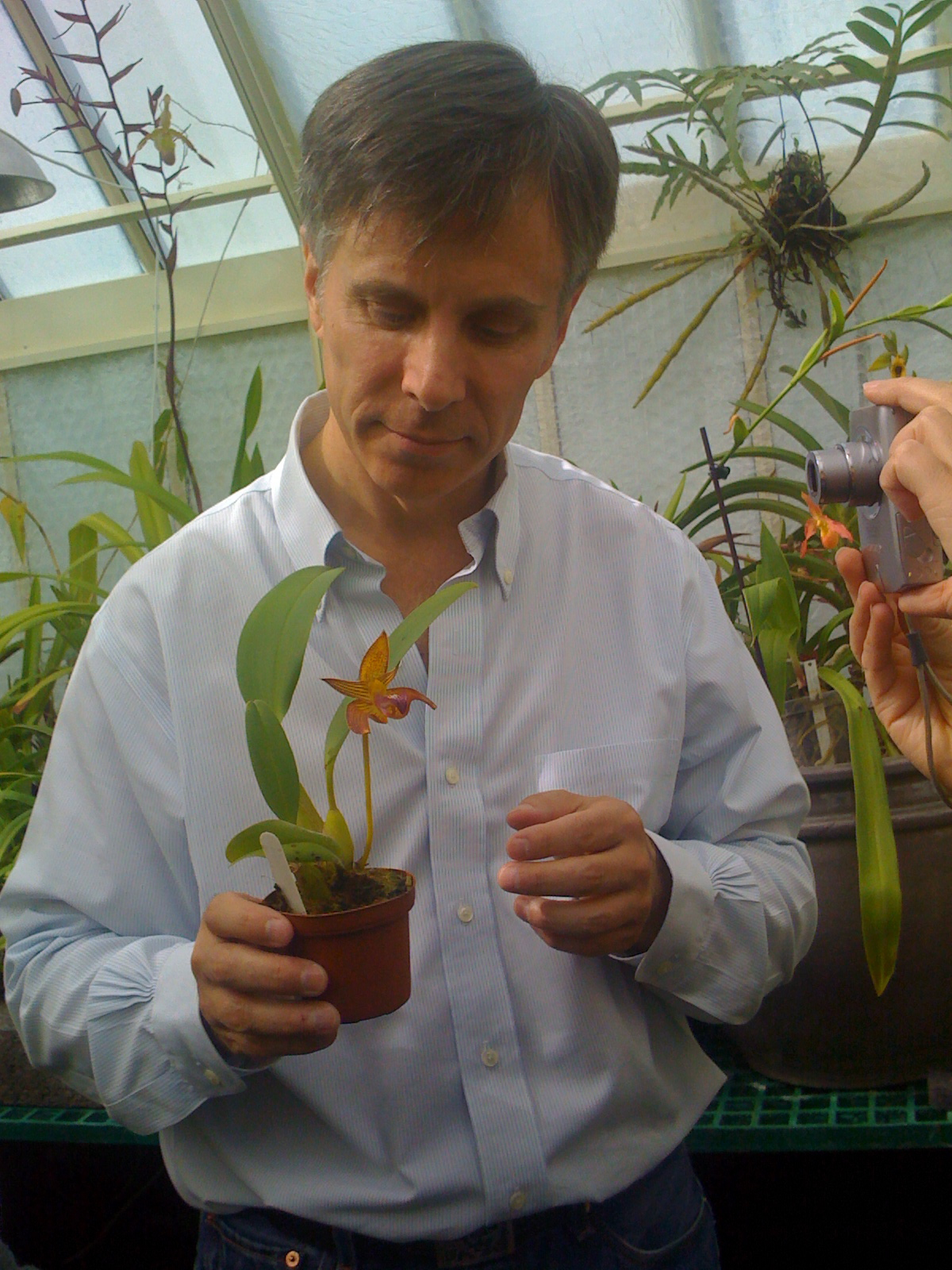 Don Dennis, Creator Of Living Tree Orchid Essences