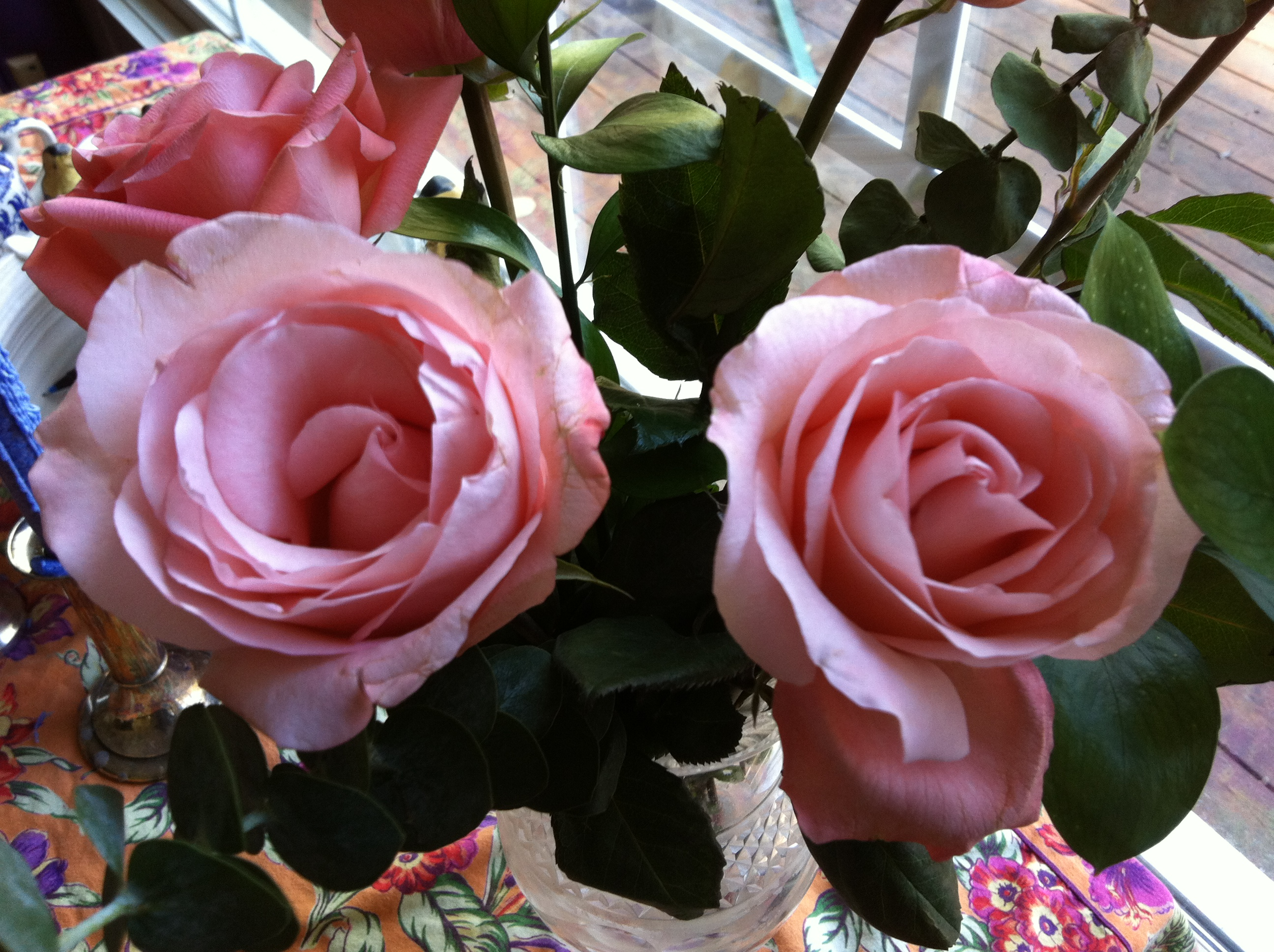Roses On My Breakfast Table