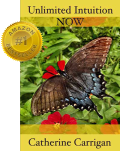 Unlimited Intuition Now - Front Cover #1 Amazon Best Seller