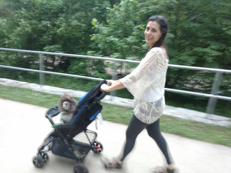 """Dog Baby Carriage Rides, the Latest Way to Walk Your Dog"""