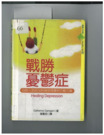Chinese edition, Healing Depression: A Holistic Guide by Catherine Carrigan
