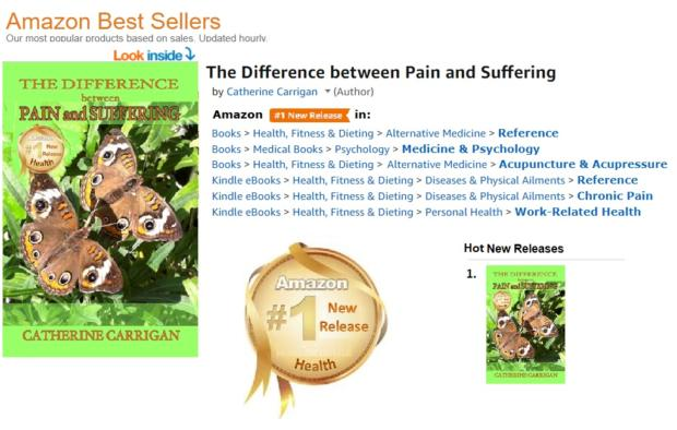 The Difference Between Pain and Suffering reached Number 1 on Amazon in 7 categories