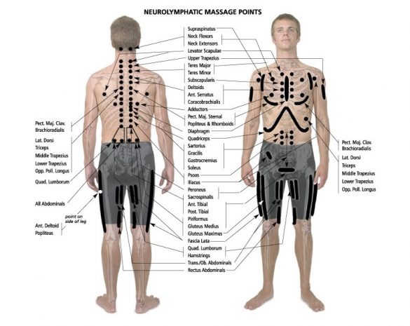 Neurolymphatic Reflex Points from Touch for Health: http://www.touch4health.com/techniques.html